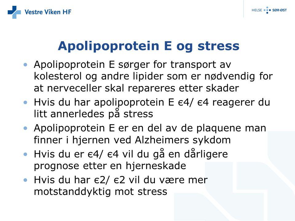 Apolipoprotein E og stress Apolipoprotein E sørger for transport av kolesterol og andre lipider som er nødvendig for at nerveceller skal repareres ett