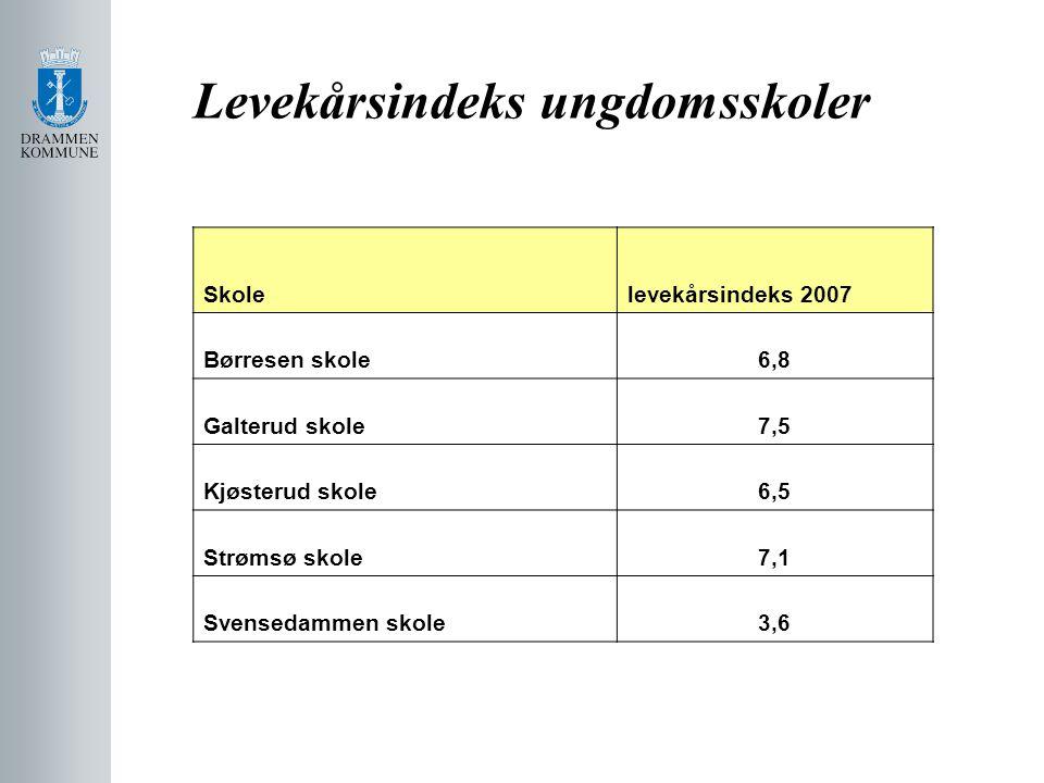 Levekårsindeks ungdomsskoler Skolelevekårsindeks 2007 Børresen skole6,8 Galterud skole7,5 Kjøsterud skole6,5 Strømsø skole7,1 Svensedammen skole3,6