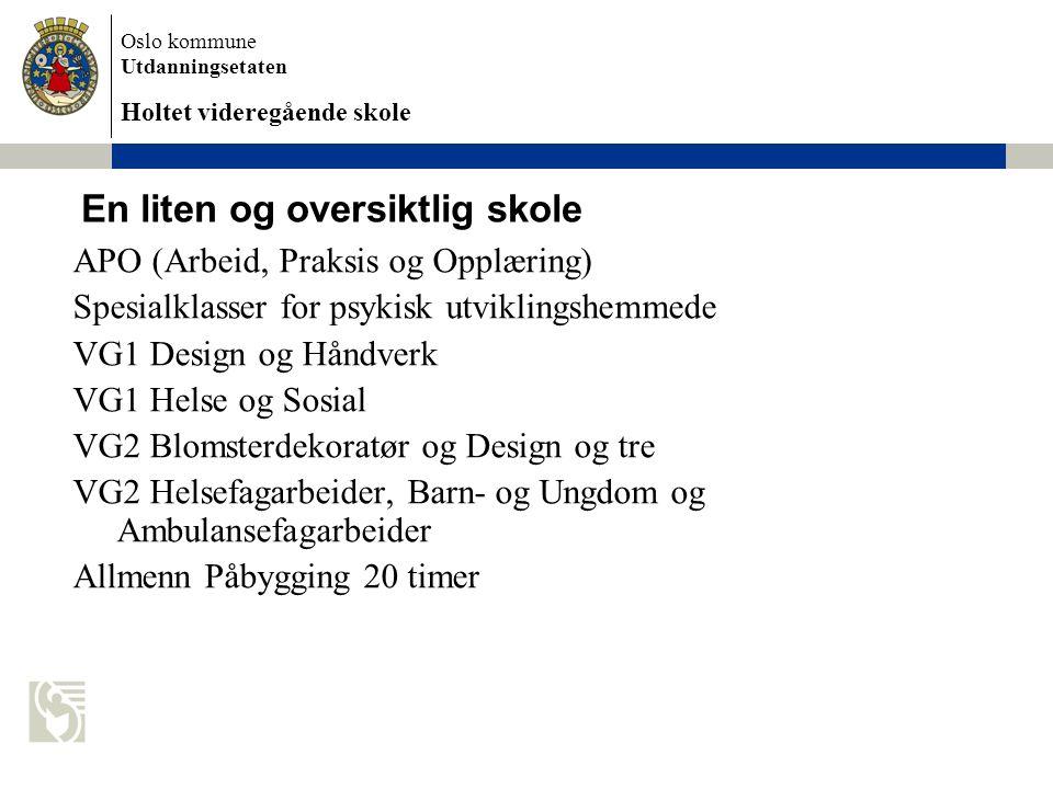 Oslo kommune Utdanningsetaten Holtet videregående skole Hvordan er vi organisert.