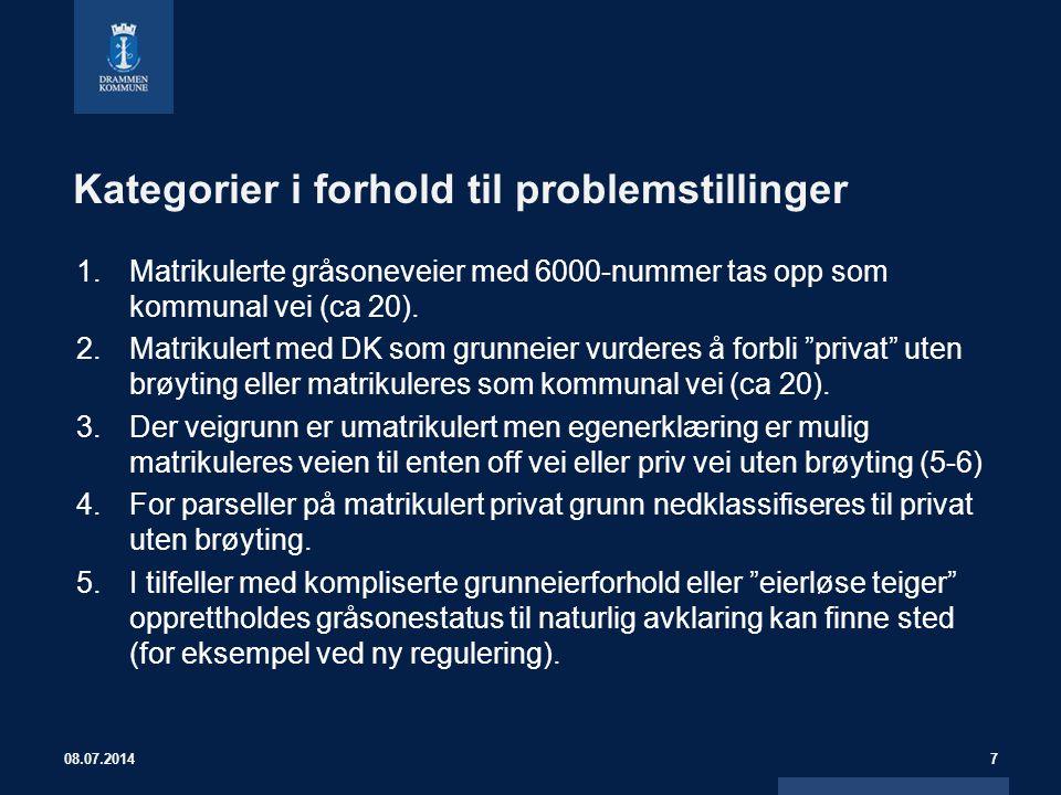Kategorier i forhold til problemstillinger 1.Matrikulerte gråsoneveier med 6000-nummer tas opp som kommunal vei (ca 20). 2.Matrikulert med DK som grun