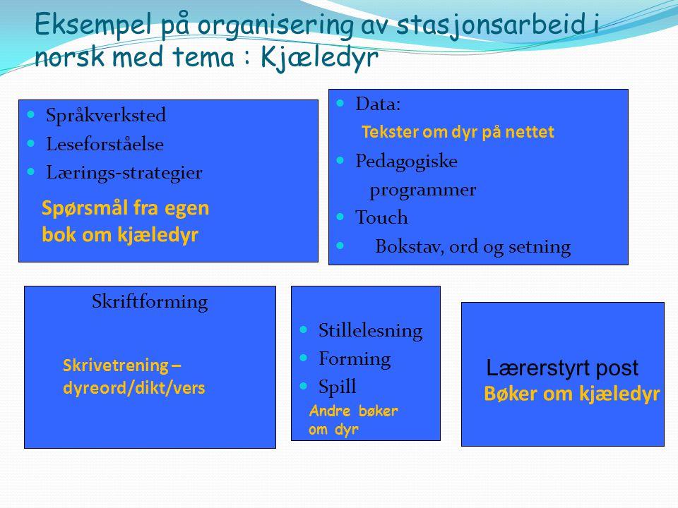 Eksempel på organisering av stasjonsarbeid i norsk med tema : Kjæledyr Språkverksted Leseforståelse Lærings-strategier Data: Pedagogiske programmer To
