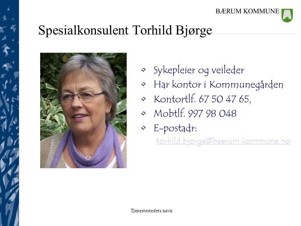 Tjenestestedets navn Demenstelefon; informasjonstelefon for Bærum kommune's innbyggere og ansatte i kommunen tlf.