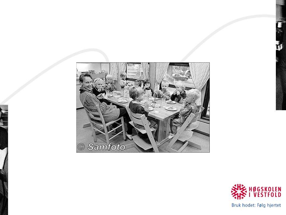 Merknad til §11 1998 fra Statens helsetilsyn (nå Sh-dir): Det bør være faste måltider med tilsyn, og ikke mer enn 3-4 timer mellom måltidene Måltidene bør inneholde brødskiver, skummet melk, eller lettmelk, frukt og/eller grønnsaker Til brødmåltidene bør barna få tilbud om skummet melk og lettmelk, frukt og grønnsaker Varme måltider kan erstatte eller være en variasjon til brødmåltidene Alle barna bør få god tid til å spise, minimum 20 minutter Det bør legges vekt på å gjøre måltidene trivelige Nye anbefalinger er under arbeid.