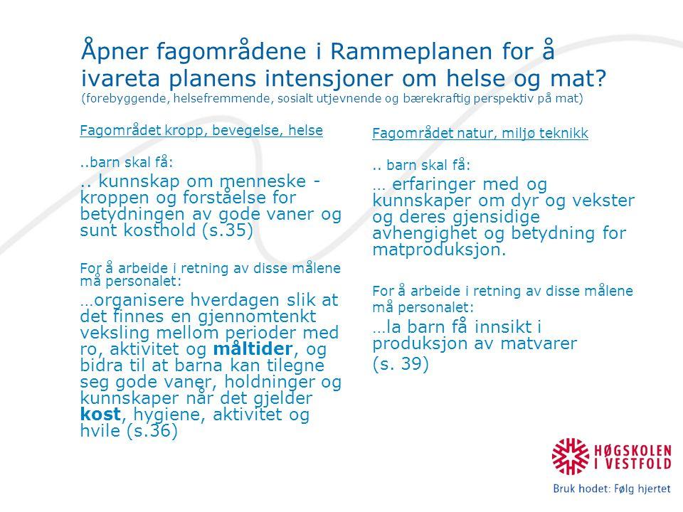 Tolking av mat i Rammeplan 2006 Fagområdet kropp, bevegelse, helse Mat knyttes passivt til vaner og måltider.