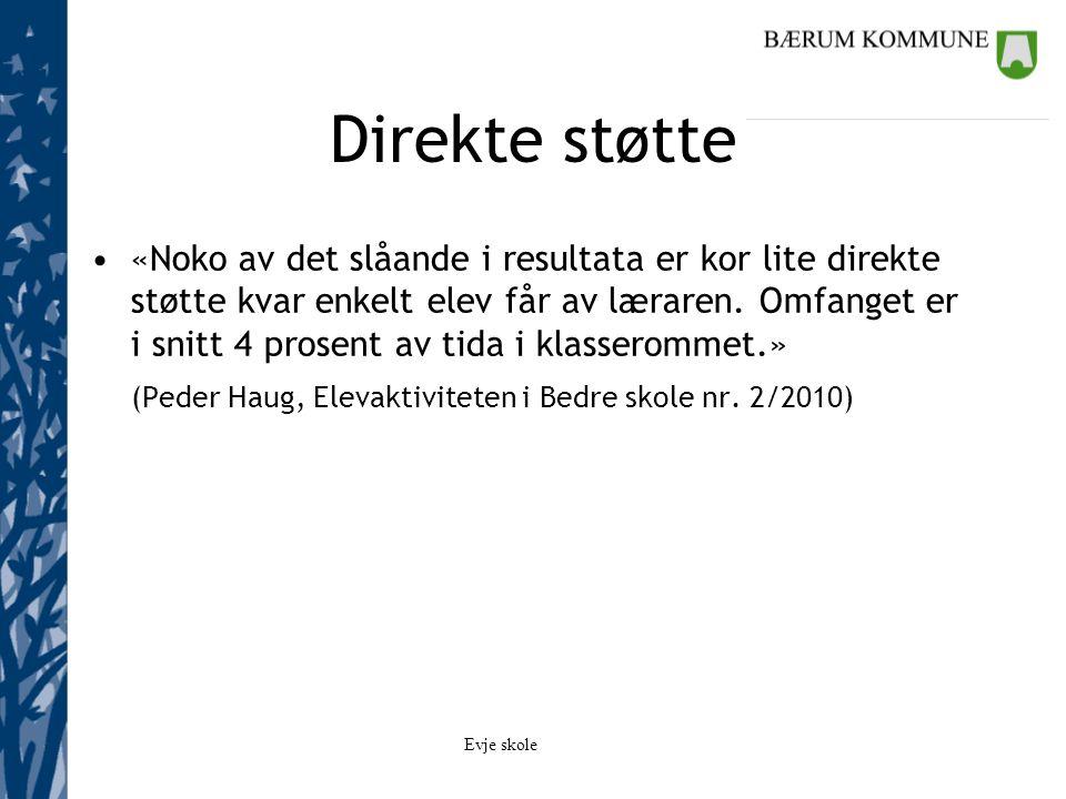 Veiledning hos lærer Hvordan bestemte elevene sorteringskategorier.
