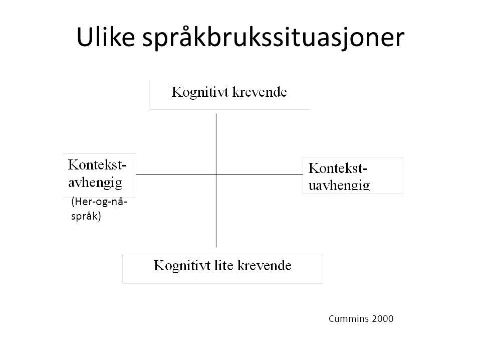 Ulike språkbrukssituasjoner Cummins 2000 (Her-og-nå- språk)