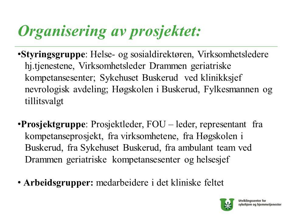 Organisering av prosjektet: Styringsgruppe: Helse- og sosialdirektøren, Virksomhetsledere hj.tjenestene, Virksomhetsleder Drammen geriatriske kompetan