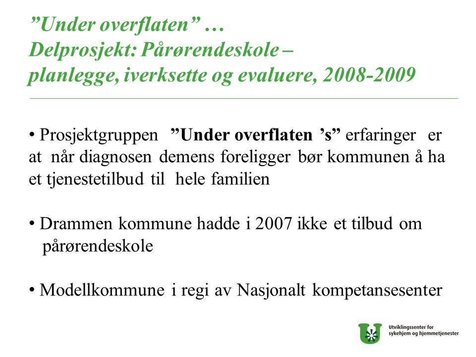 """""""Under overflaten"""" … Delprosjekt: Pårørendeskole – planlegge, iverksette og evaluere, 2008-2009 Prosjektgruppen """"Under overflaten 's"""" erfaringer er at"""