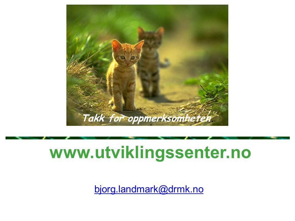 www.utviklingssenter.no Takk for oppmerksomheten. bjorg.landmark@drmk.no