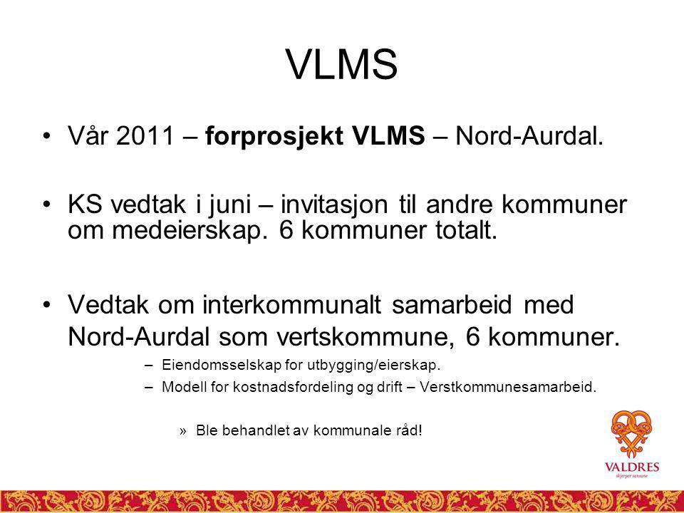 VLMS Vår 2011 – forprosjekt VLMS – Nord-Aurdal.