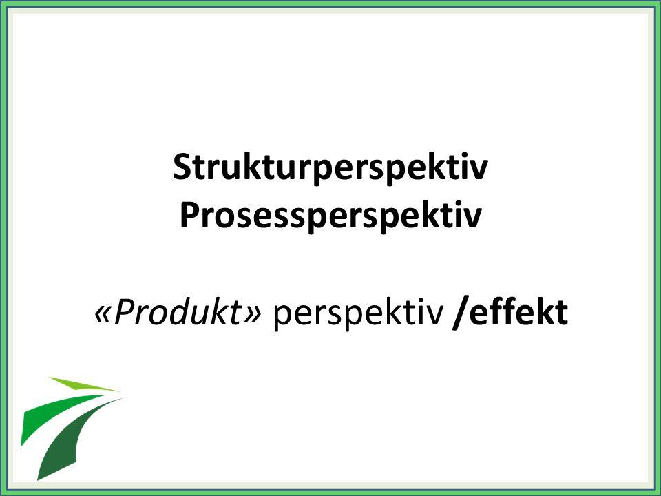 Strukturperspektiv Prosessperspektiv «Produkt» perspektiv /effekt
