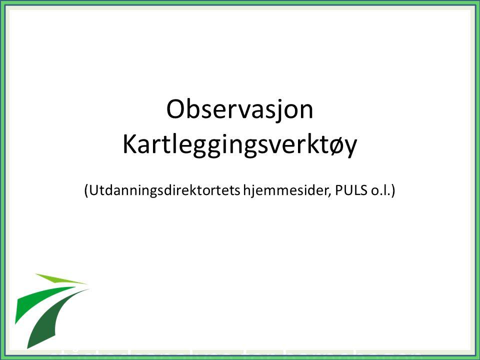 Observasjon Kartleggingsverktøy (Utdanningsdirektortets hjemmesider, PULS o.l.) (Det er også mulig å benytte Utdanningsdirektoratets ståstedsanalyse f