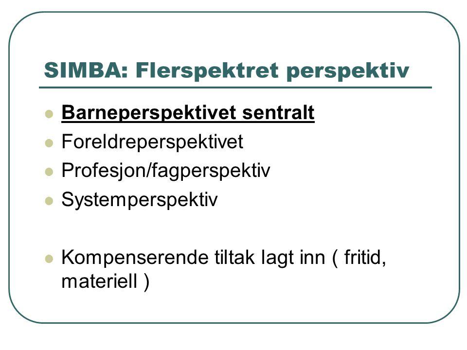 SIMBA: Flerspektret perspektiv Barneperspektivet sentralt Foreldreperspektivet Profesjon/fagperspektiv Systemperspektiv Kompenserende tiltak lagt inn