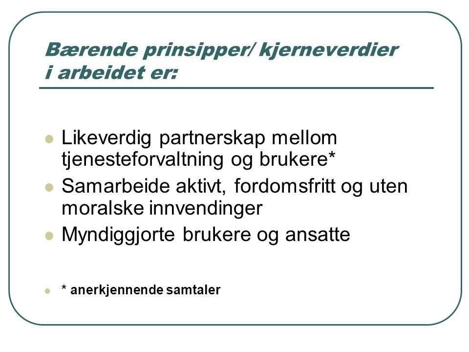 Bærende prinsipper/ kjerneverdier i arbeidet er: Likeverdig partnerskap mellom tjenesteforvaltning og brukere* Samarbeide aktivt, fordomsfritt og uten