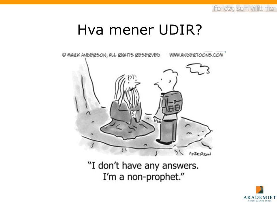Hva mener UDIR?