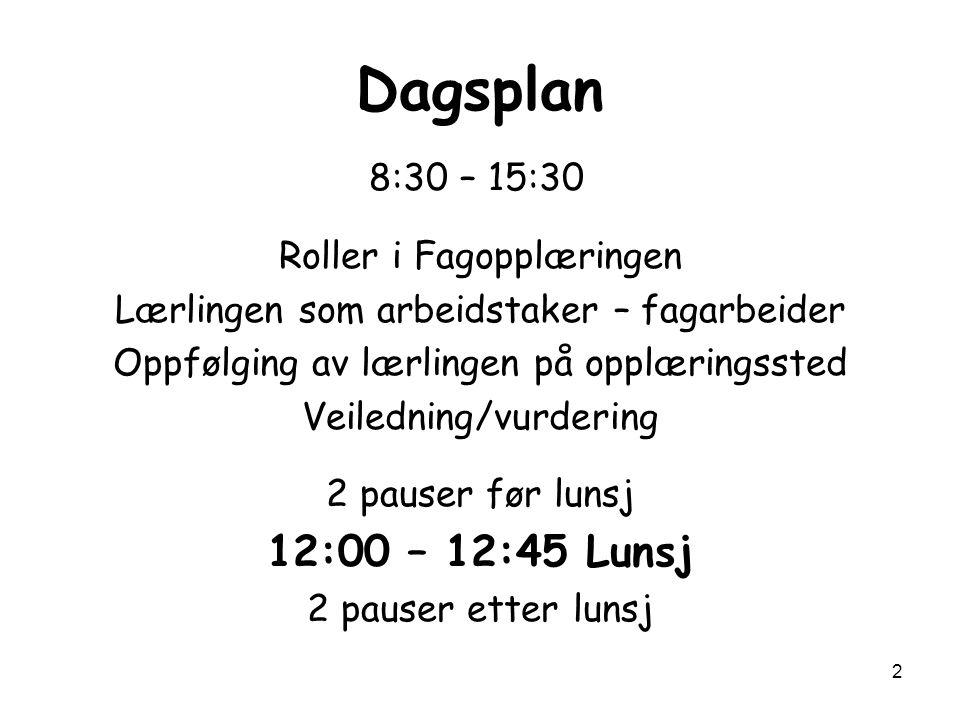 2 Dagsplan 8:30 – 15:30 Roller i Fagopplæringen Lærlingen som arbeidstaker – fagarbeider Oppfølging av lærlingen på opplæringssted Veiledning/vurderin