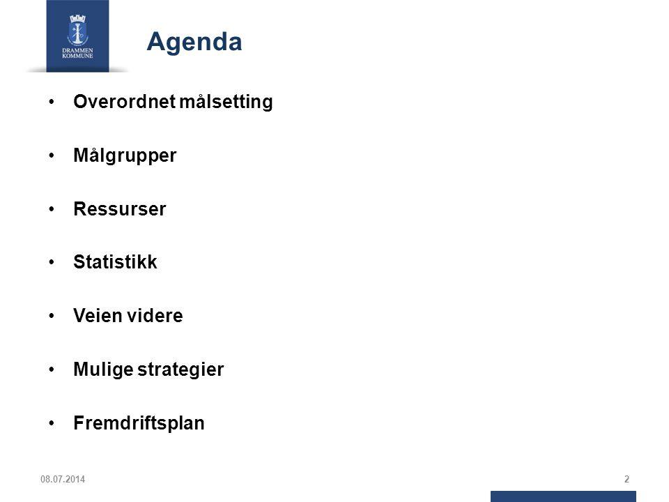 Agenda Overordnet målsetting Målgrupper Ressurser Statistikk Veien videre Mulige strategier Fremdriftsplan 08.07.20142