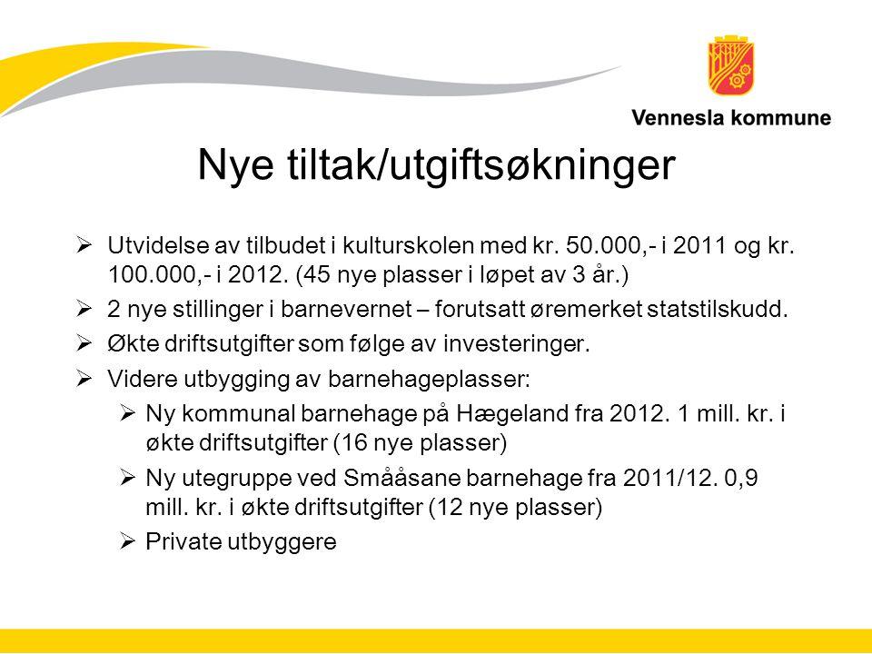 Nye tiltak/utgiftsøkninger  Utvidelse av tilbudet i kulturskolen med kr.