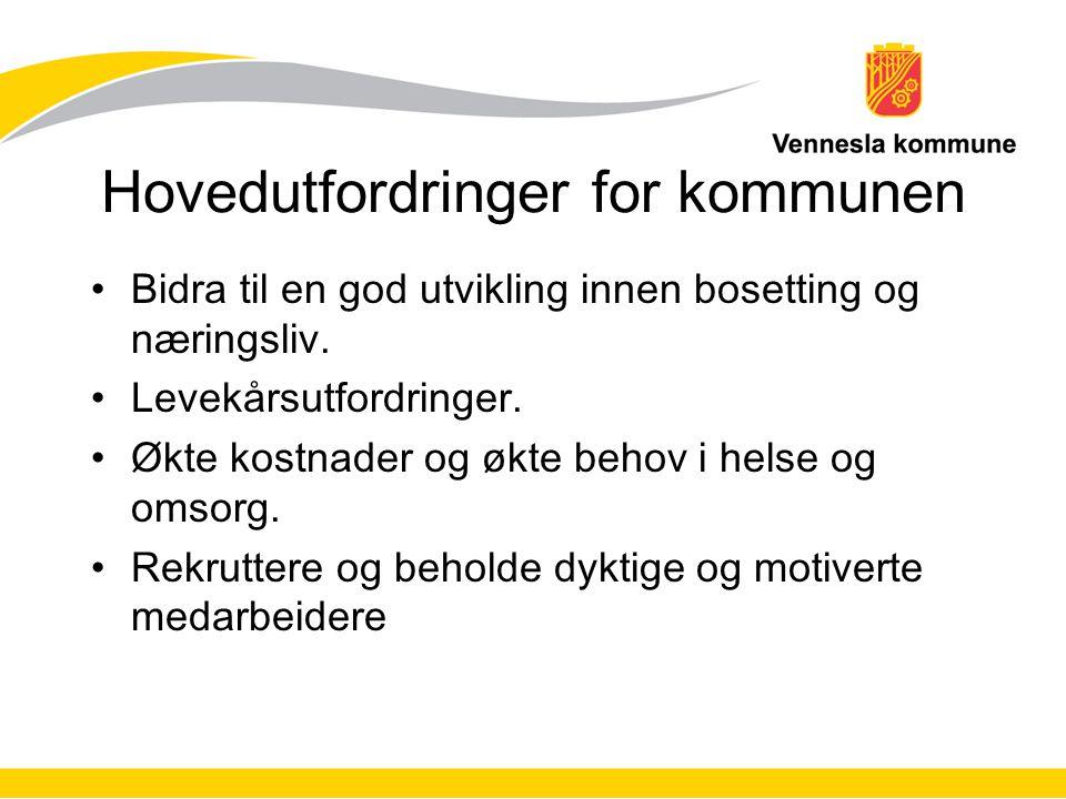 Hovedutfordringer for kommunen Bidra til en god utvikling innen bosetting og næringsliv.