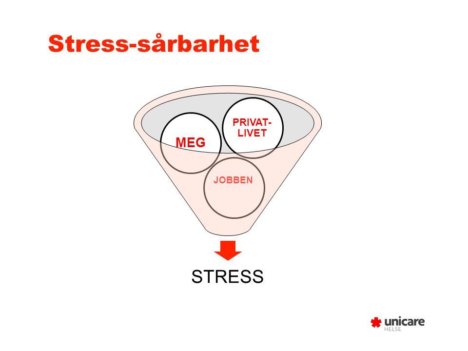 Stress-sårbarhet STRESS JOBBEN MEG PRIVAT- LIVET