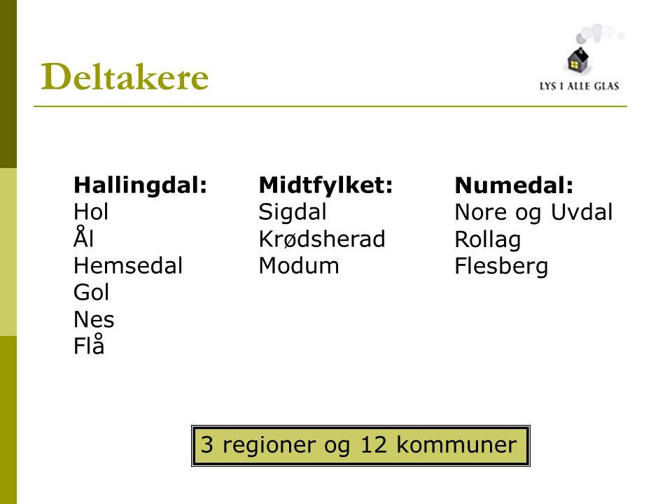 Deltakere Hallingdal: Hol Ål Hemsedal Gol Nes Flå Midtfylket: Sigdal Krødsherad Modum Numedal: Nore og Uvdal Rollag Flesberg 3 regioner og 12 kommuner