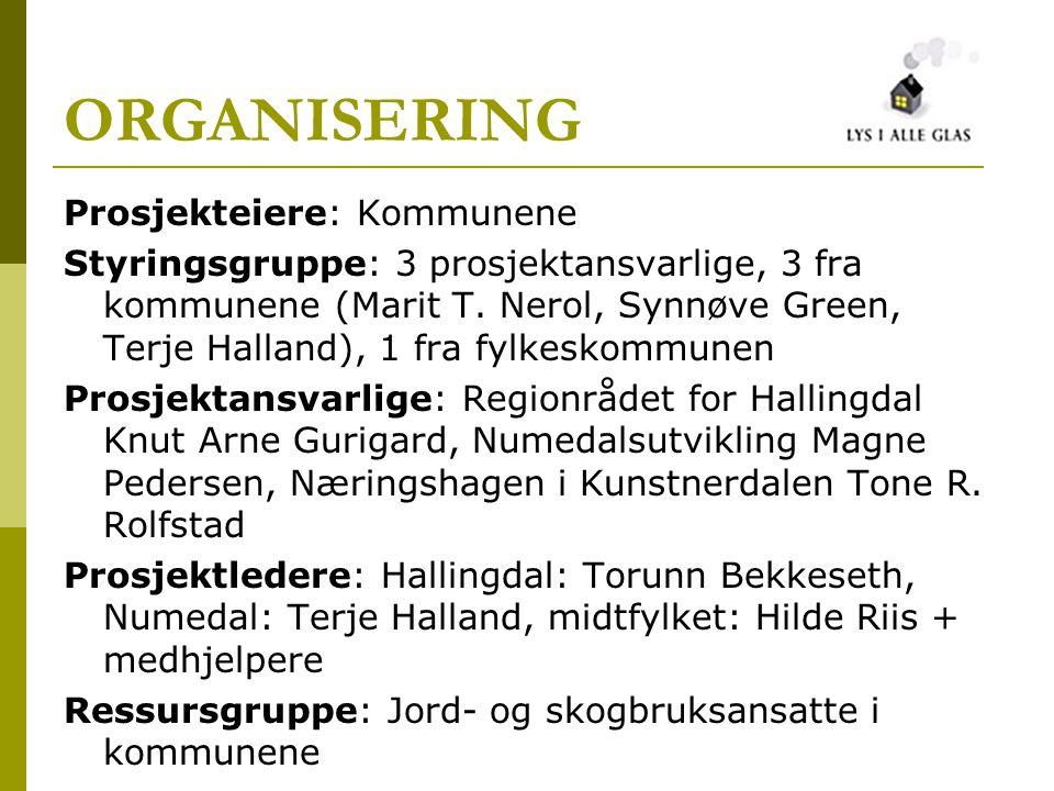 ORGANISERING Prosjekteiere: Kommunene Styringsgruppe: 3 prosjektansvarlige, 3 fra kommunene (Marit T.