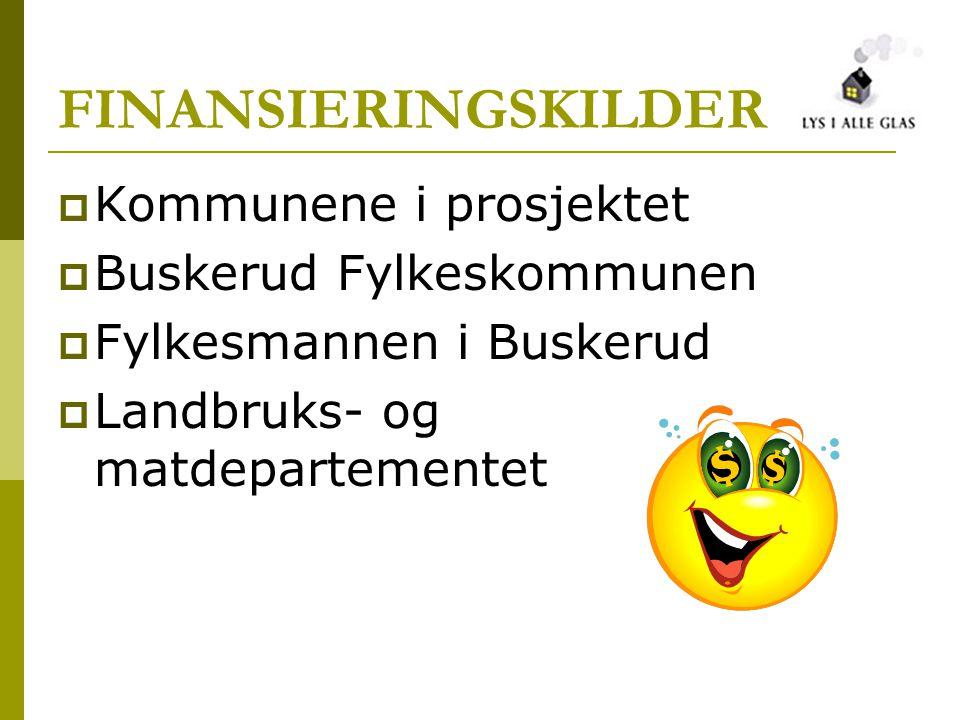 FINANSIERINGSKILDER  Kommunene i prosjektet  Buskerud Fylkeskommunen  Fylkesmannen i Buskerud  Landbruks- og matdepartementet