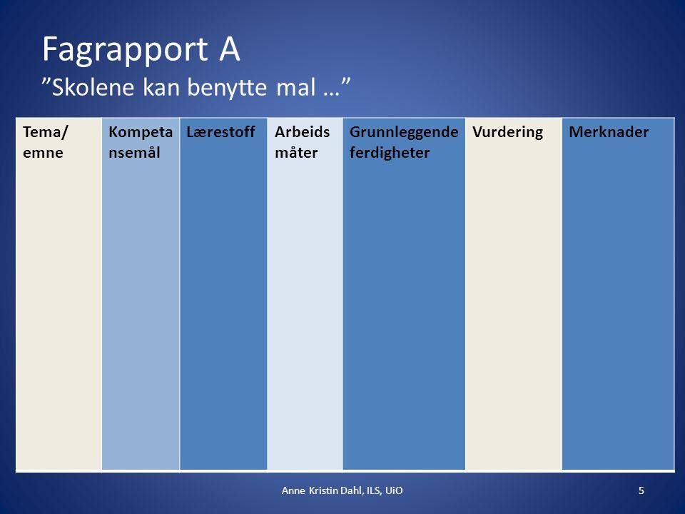 Fagrapport B Elevmedvirkning i planarbeidetIndividuelle/differensierte opplegg 6