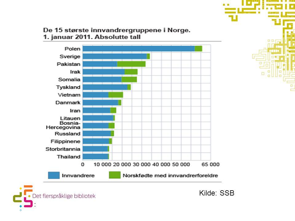 10 mest lånte språk i 2010 Urdu Russisk Arabisk Polsk Persisk Somali Spansk Vietnamesisk Kurdisk (kurmandji + sorani) Thai