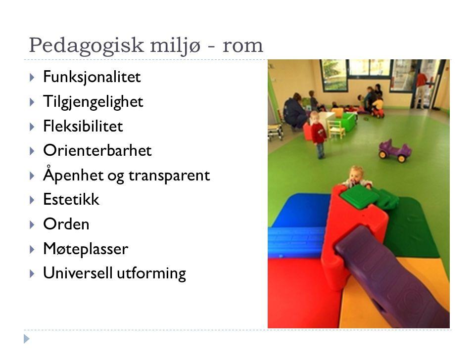Pedagogisk miljø - rom  Funksjonalitet  Tilgjengelighet  Fleksibilitet  Orienterbarhet  Åpenhet og transparent  Estetikk  Orden  Møteplasser 