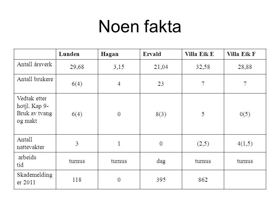 Noen fakta LundenHaganErvaldVilla Eik EVilla Eik F Antall årsverk 29,683,1521,0432,5828,88 Antall brukere 6(4)42377 Vedtak etter hotjl.
