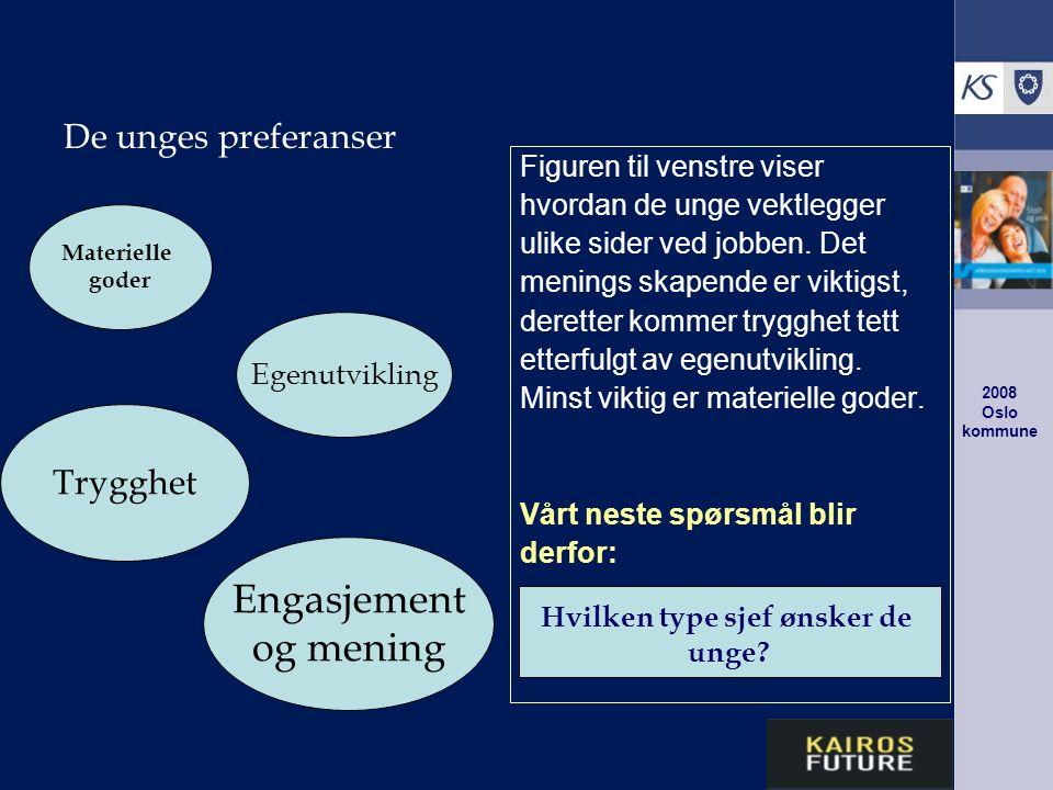 2008 Oslo kommune De unges preferanser Figuren til venstre viser hvordan de unge vektlegger ulike sider ved jobben.