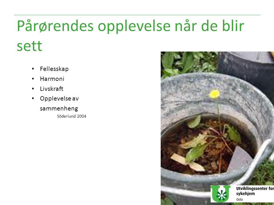 Pårørendes opplevelse når de blir sett Fellesskap Harmoni Livskraft Opplevelse av sammenheng Söderlund 2004