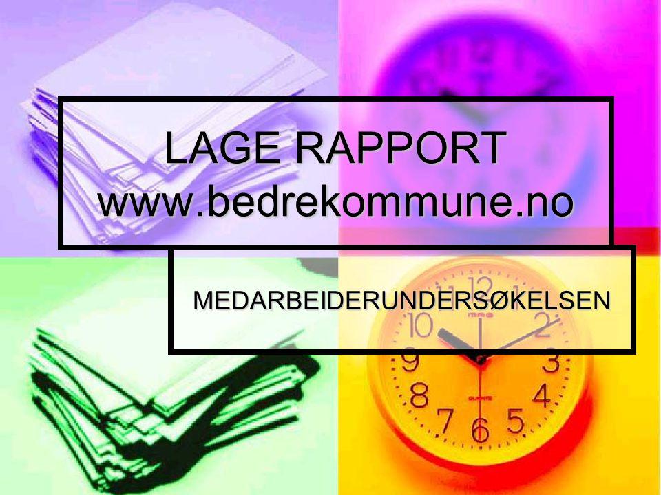 LAGE RAPPORT www.bedrekommune.no MEDARBEIDERUNDERSØKELSEN