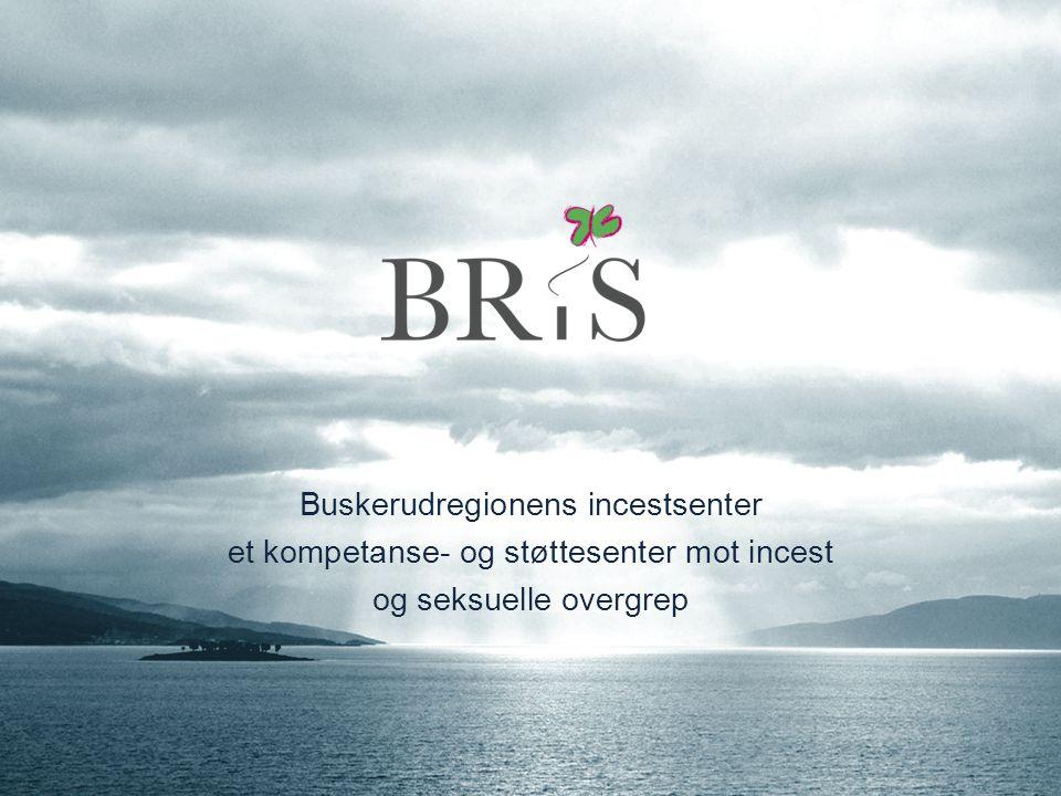 Buskerudregionens incestsenter et kompetanse- og støttesenter mot incest og seksuelle overgrep