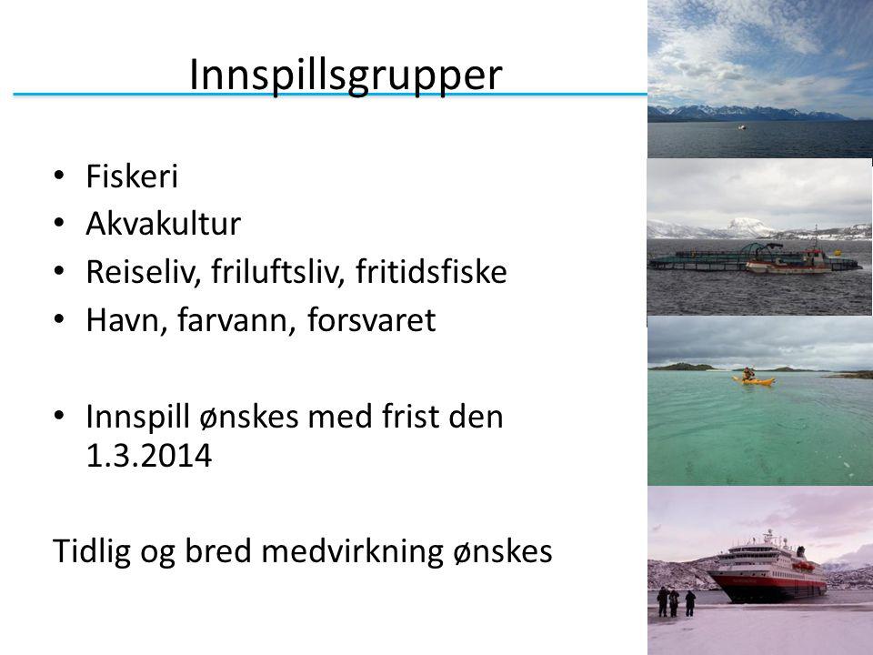 Innspillsgrupper Fiskeri Akvakultur Reiseliv, friluftsliv, fritidsfiske Havn, farvann, forsvaret Innspill ønskes med frist den 1.3.2014 Tidlig og bred