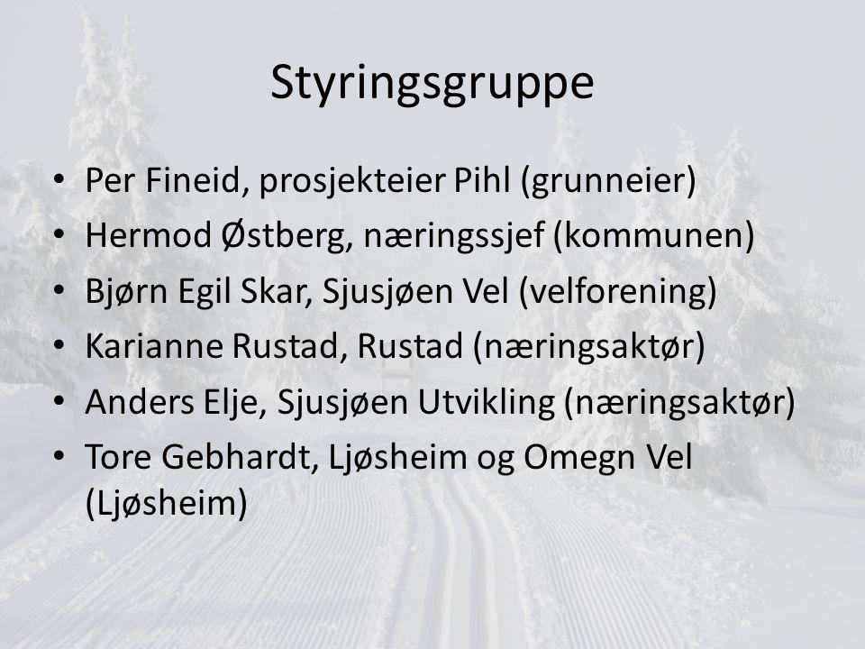 Målsettinger Etablere nye Destinasjon Sjusjøen SA – Vedtekter – Styret – Stiftere Avvikle Sjusjøen Reiseliv SA – I forhold til vedtekter visitsjusjoen.no