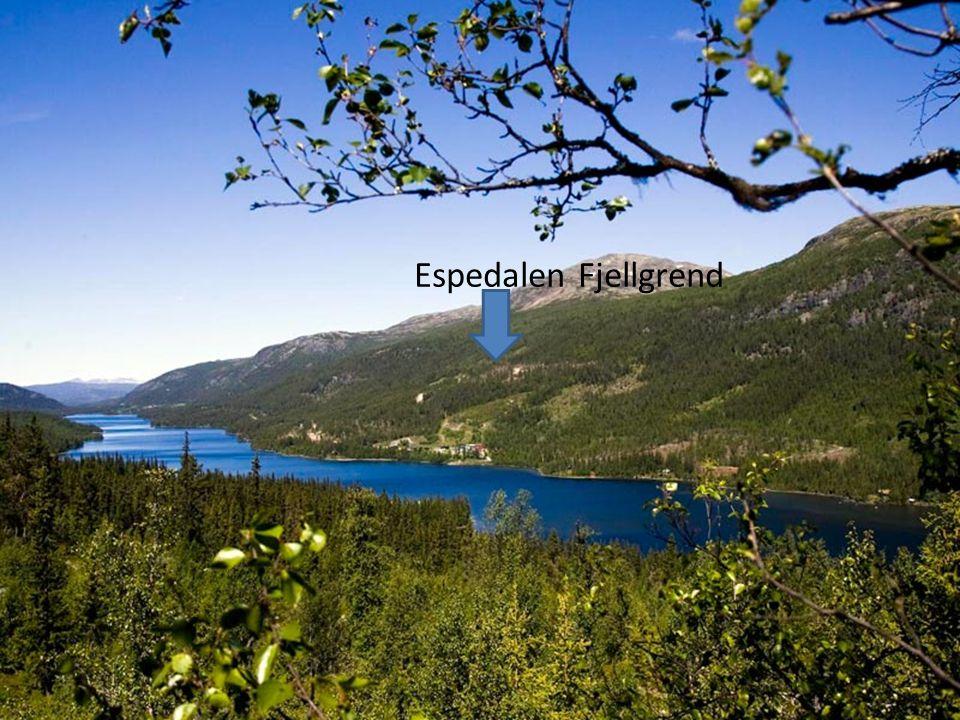 Espedalen Fjellgrend