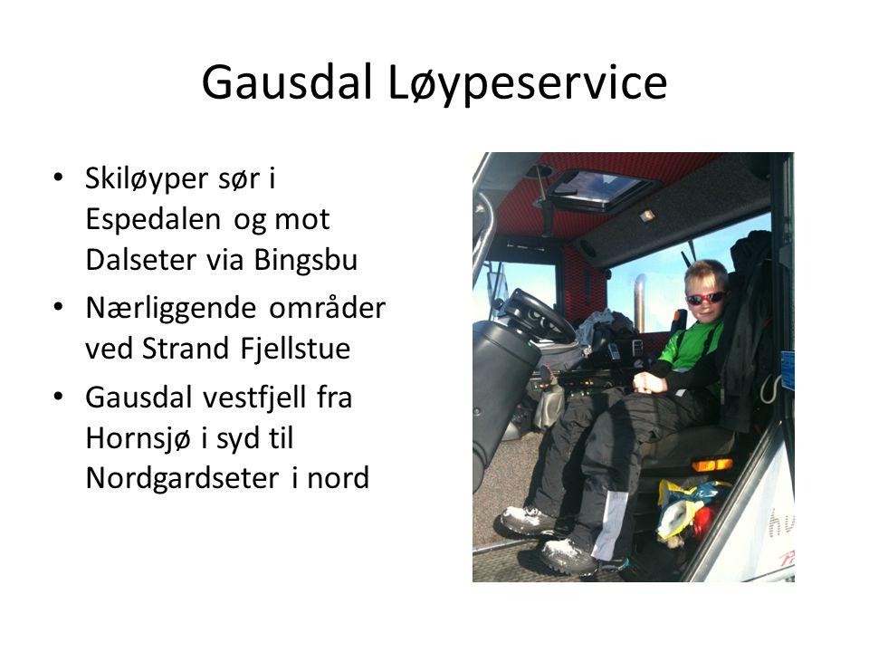 Gausdal Løypeservice Skiløyper sør i Espedalen og mot Dalseter via Bingsbu Nærliggende områder ved Strand Fjellstue Gausdal vestfjell fra Hornsjø i sy