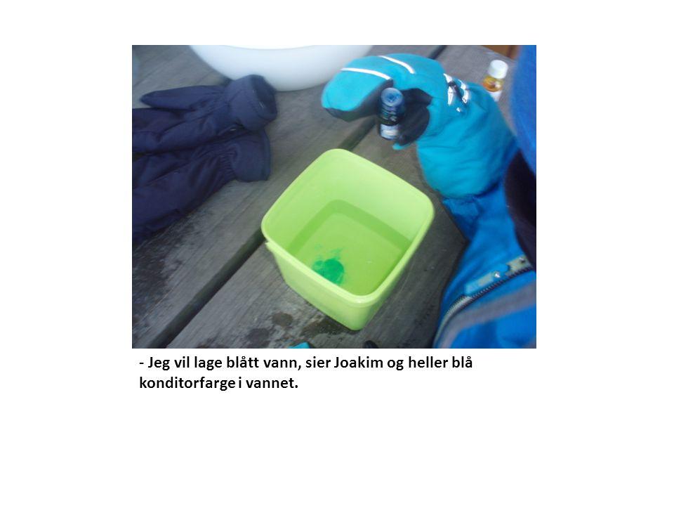 - Jeg vil lage blått vann, sier Joakim og heller blå konditorfarge i vannet.