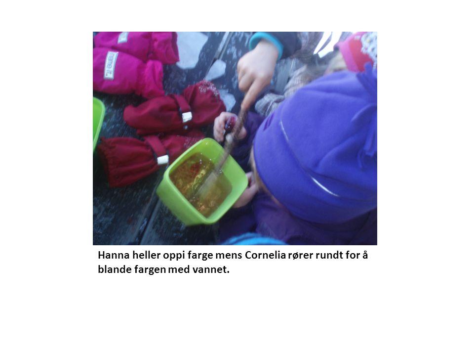 Hanna heller oppi farge mens Cornelia rører rundt for å blande fargen med vannet.