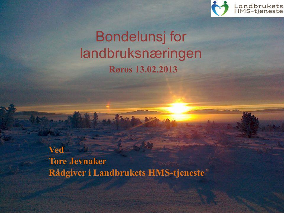 Bondelunsj for landbruksnæringen Ved Tore Jevnaker Rådgiver i Landbrukets HMS-tjeneste Røros 13.02.2013