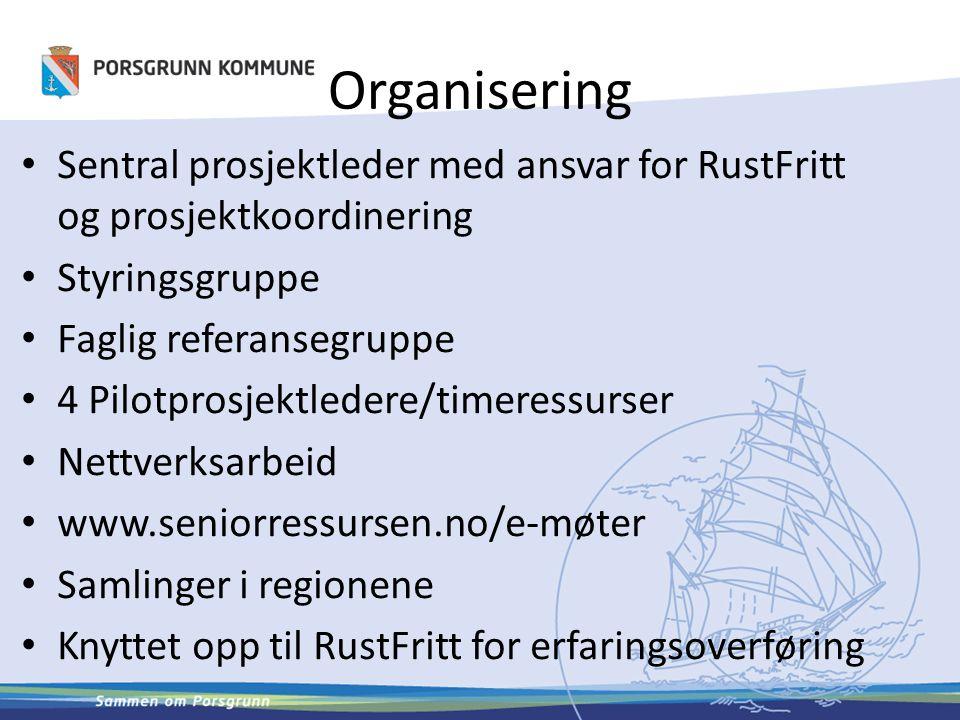 Organisering Sentral prosjektleder med ansvar for RustFritt og prosjektkoordinering Styringsgruppe Faglig referansegruppe 4 Pilotprosjektledere/timere