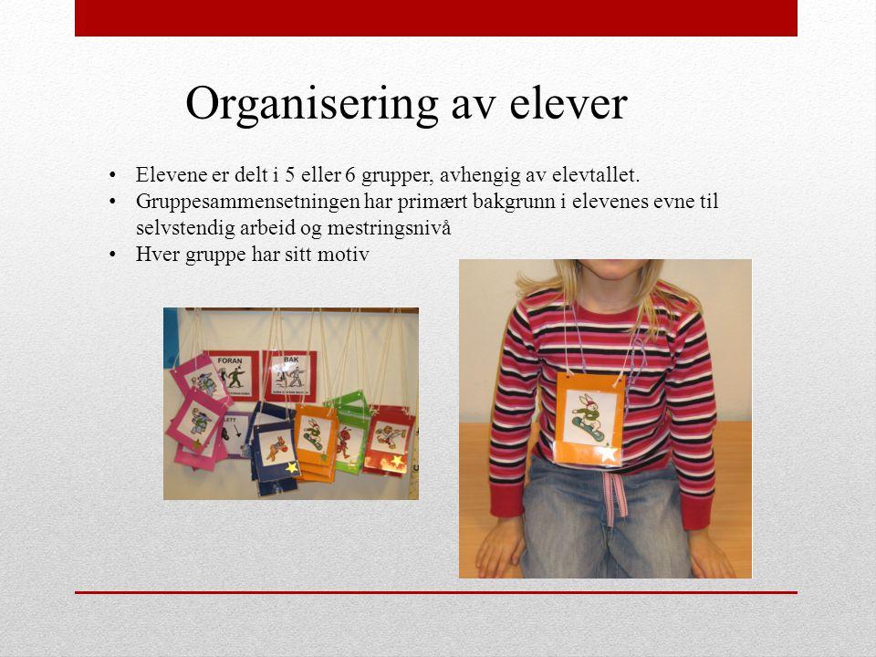 Organisering av elever Elevene er delt i 5 eller 6 grupper, avhengig av elevtallet. Gruppesammensetningen har primært bakgrunn i elevenes evne til sel