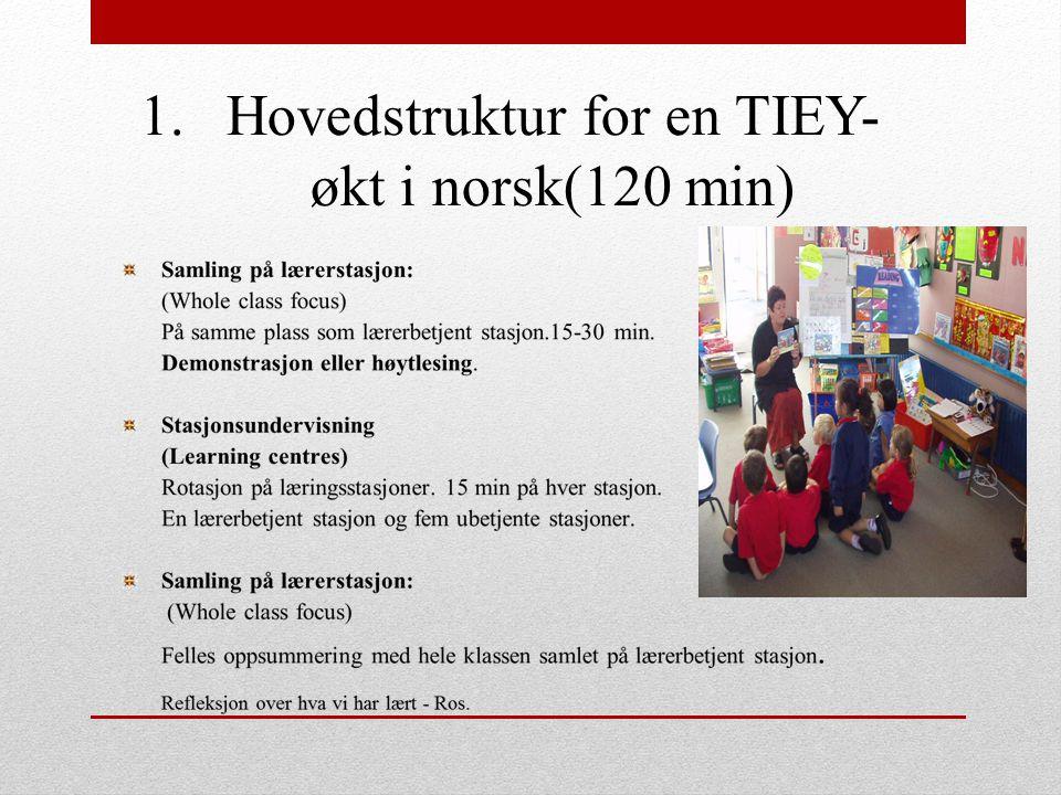 1.Hovedstruktur for en TIEY- økt i norsk(120 min)