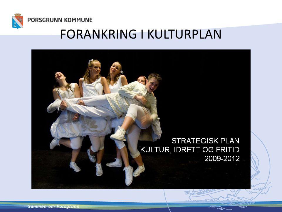 ORGANISERING AV KULTUR FOR ELDRE STYRINGSGRUPPE M/RÅDMANN 3G – Folkehelse + Høgskolen + Kultur SPASERSTOKKUTVALG I OPPSTARTEN FAGGRUPPE INNEN KULTUR KULTURKONTAKTER I SYKEHJEM/HJEMMETJ.