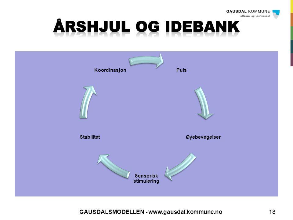 GAUSDALSMODELLEN - www.gausdal.kommune.no18 Puls Øyebevegelser Sensorisk stimulering Stabilitet Koordinasjon