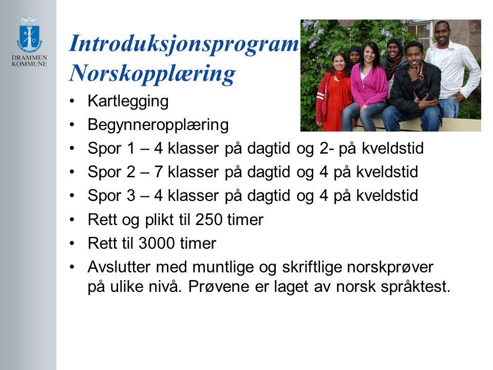 Introduksjonsprogram Norskopplæring Kartlegging Begynneropplæring Spor 1 – 4 klasser på dagtid og 2- på kveldstid Spor 2 – 7 klasser på dagtid og 4 på