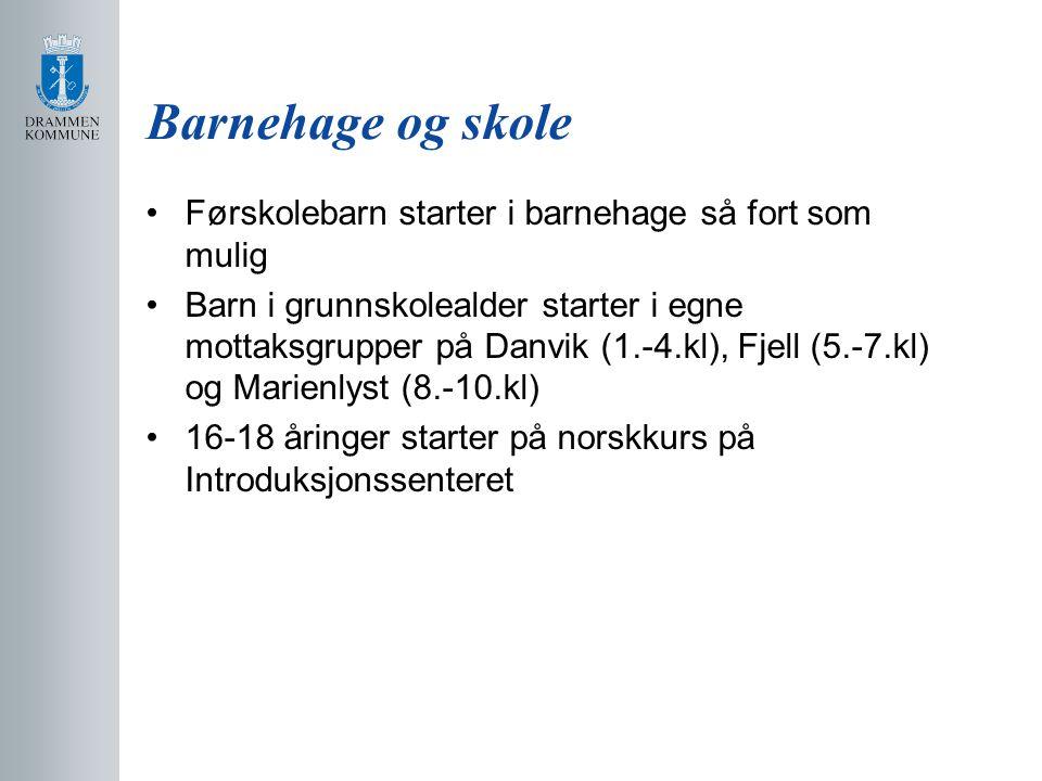Barnehage og skole Førskolebarn starter i barnehage så fort som mulig Barn i grunnskolealder starter i egne mottaksgrupper på Danvik (1.-4.kl), Fjell