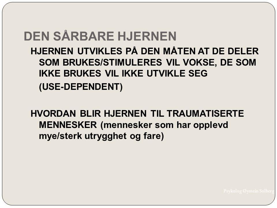 DEN SÅRBARE HJERNEN HJERNEN UTVIKLES PÅ DEN MÅTEN AT DE DELER SOM BRUKES/STIMULERES VIL VOKSE, DE SOM IKKE BRUKES VIL IKKE UTVIKLE SEG (USE-DEPENDENT)